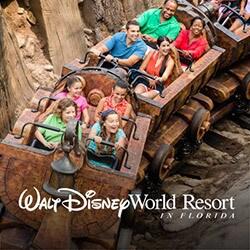 Walt Disney World in Florida