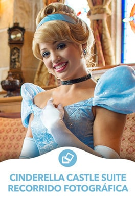 Cinderella - Castle Gallery