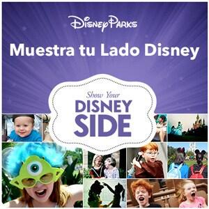 Flip Side - Disney Side