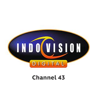 Disney Junior on Indovision