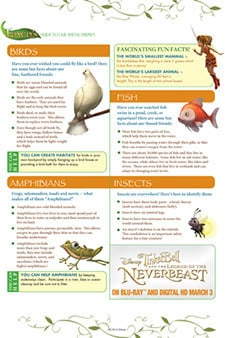 Fawn's Guide to Our Animal Friends 2