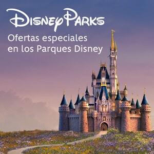 Flip Side - Disney Parks