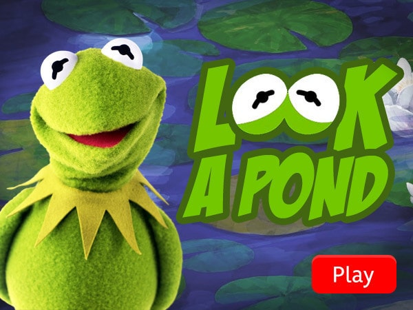 Kermit's Look A Pond