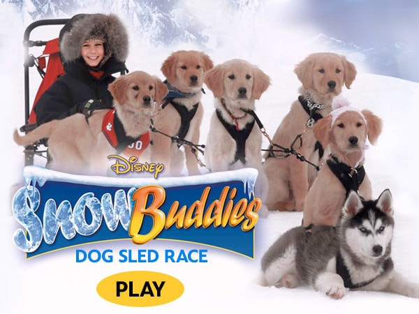 Snow Buddies Dog Sled Race