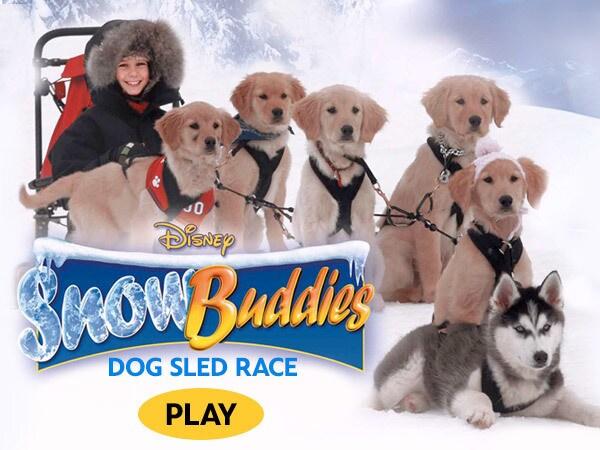 Snow Buddies Dog Sled Race