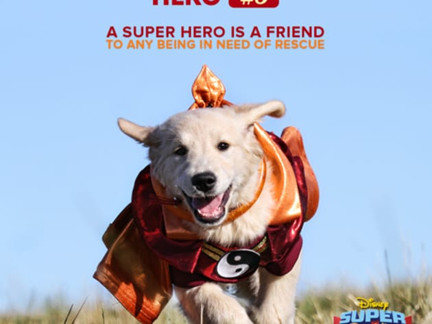 A super hero is a friend to any being in need of rescue