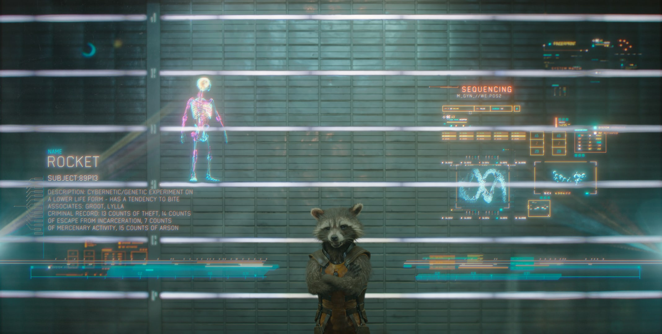 Rocket (a raccoon) voiced by Bradley Cooper in the movie Guardians of the Galaxy