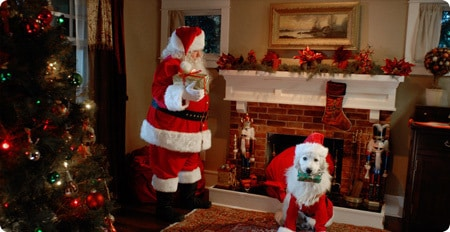 Santa and his furry counterpart, Santa Paws, deliver Christmas gifts.