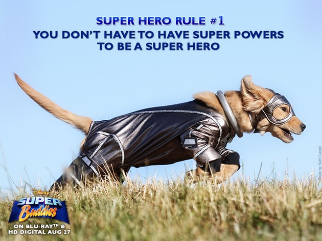 You don't have to have super powers to be a super hero.