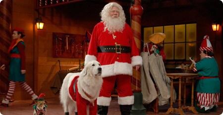 Santa and Santa Paws back at the workshop.