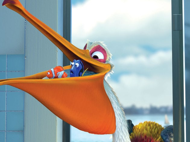 Nigel is always glad to lend a helping hand to Marlin and Dory.