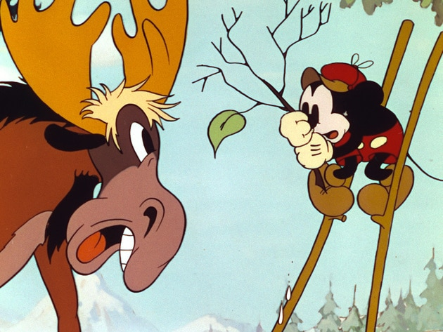 Mickey comes face-to-face with a Moose in the woods.