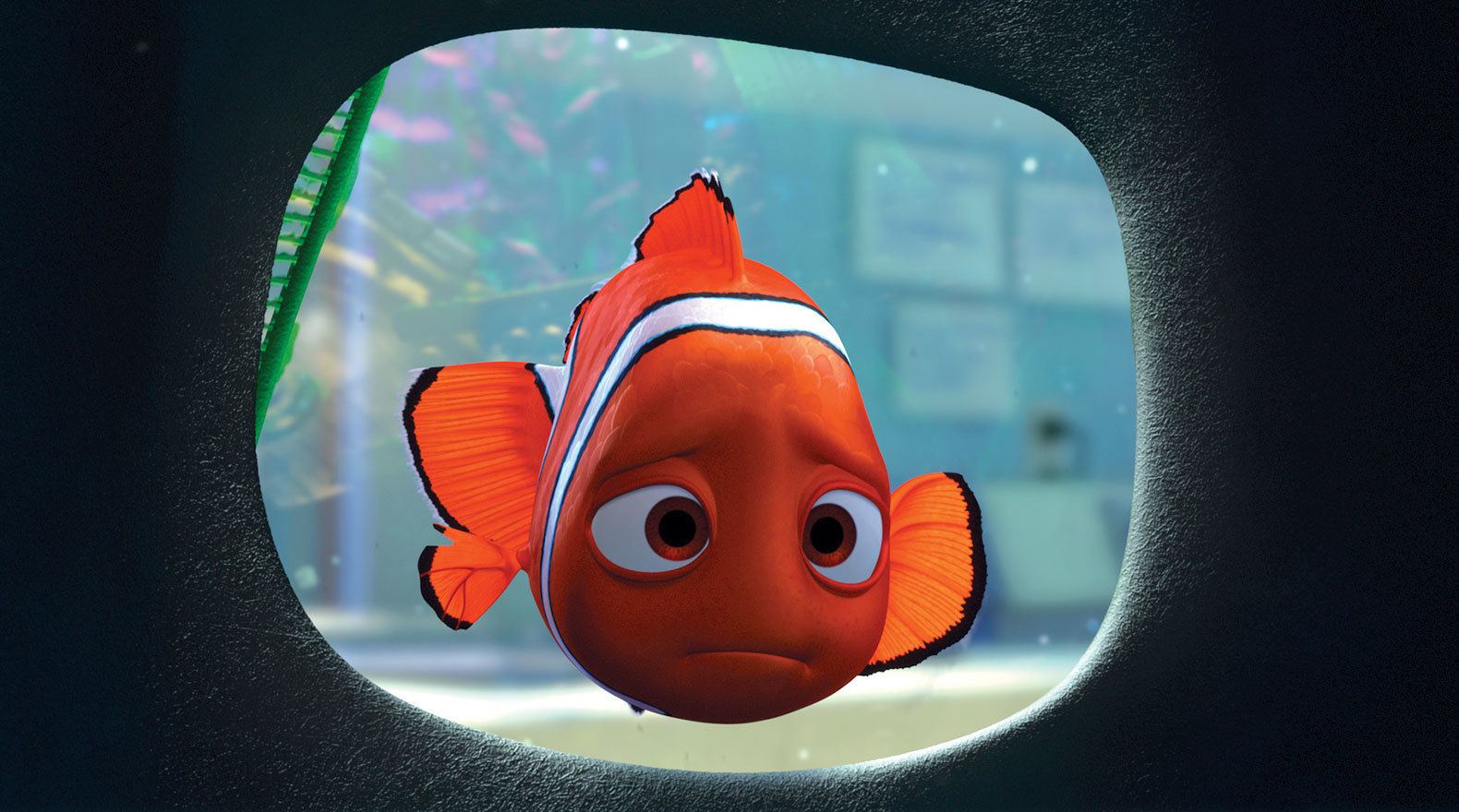 Far from home, Nemo misses dad, Marlin, and his home on the Great Barrier Reef.