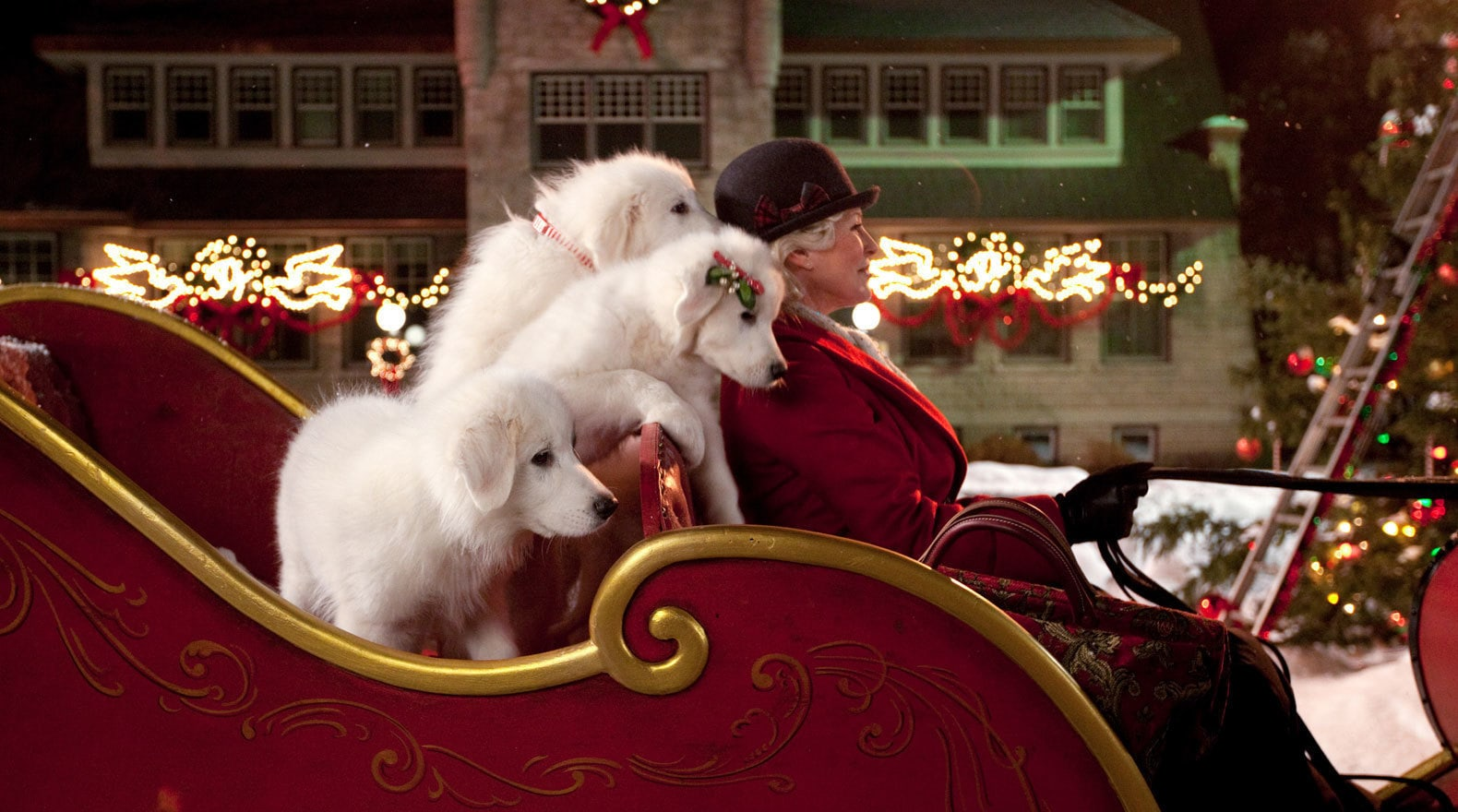 Puppies in Santa's sleigh in the movie Santa Paws 2