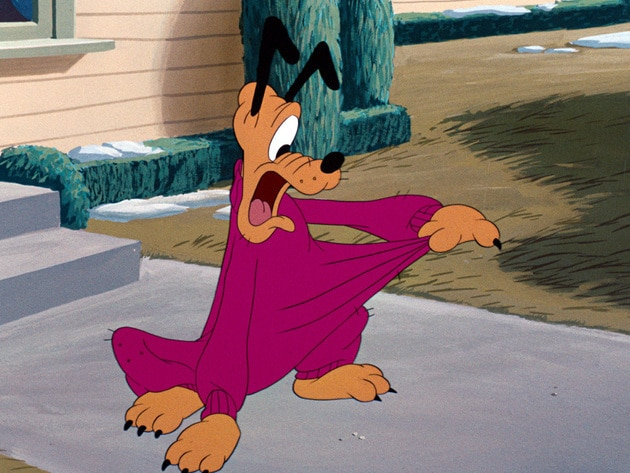 When Minnie knits Pluto a pink sweater, he can't get rid of it.
