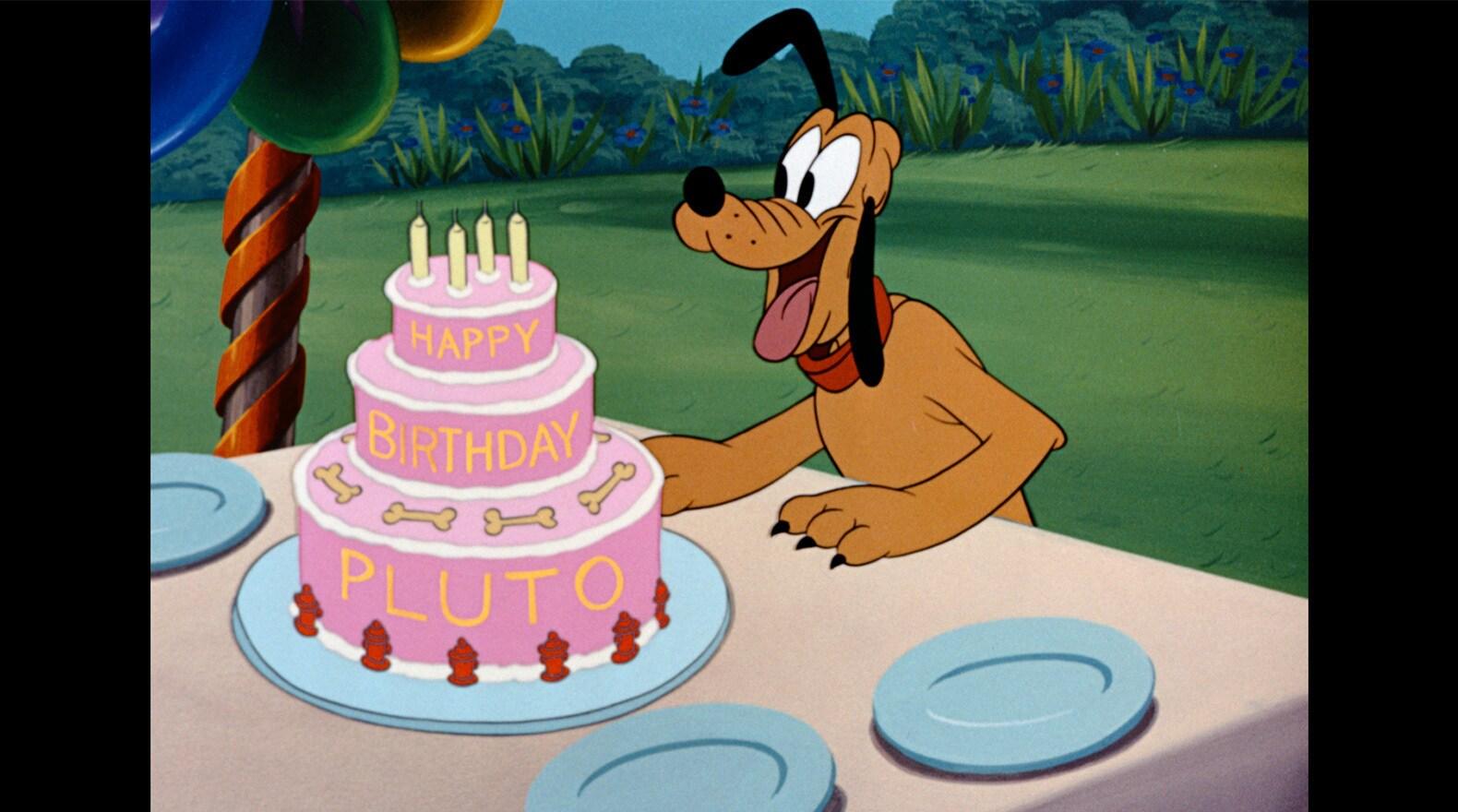 Pluto Gallery Disney Mickey