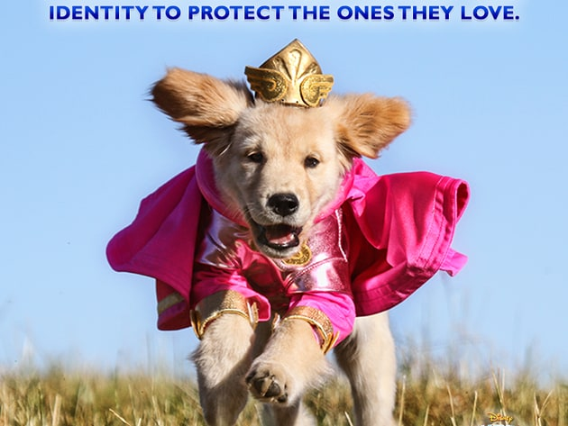 A super hero must always conceal their identity to protect the ones they love