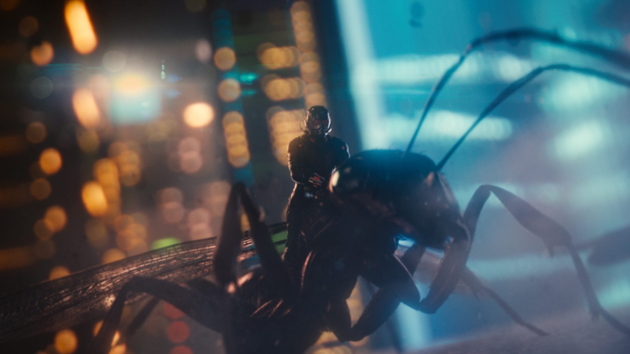 Paul Rudd (as Ant-Man) riding an ant named Ant-thony