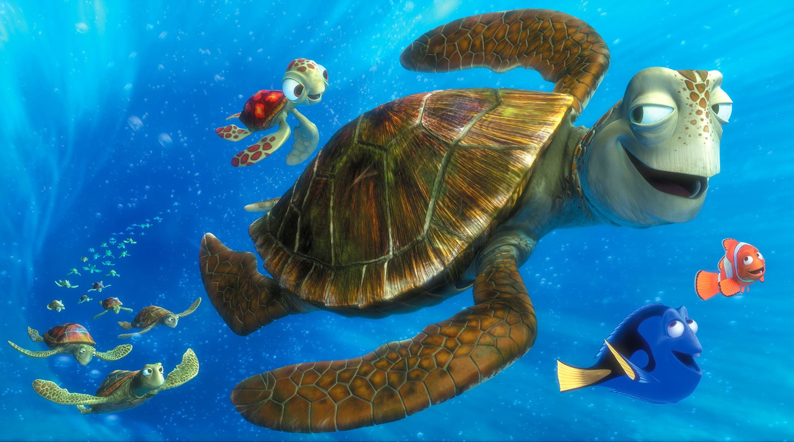 """Characters Crush, Squirt, Dory and Marlin in the EAC with other turtles in """"Finding Nemo"""""""