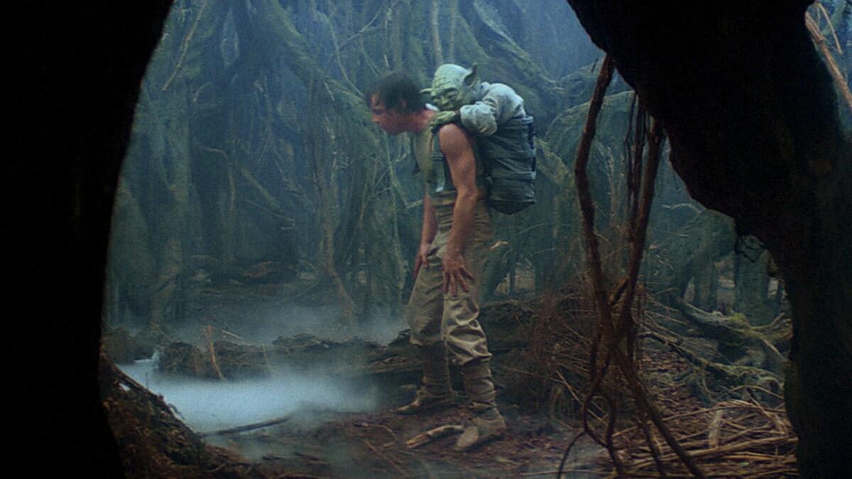 Yoda et Luke Skywalker