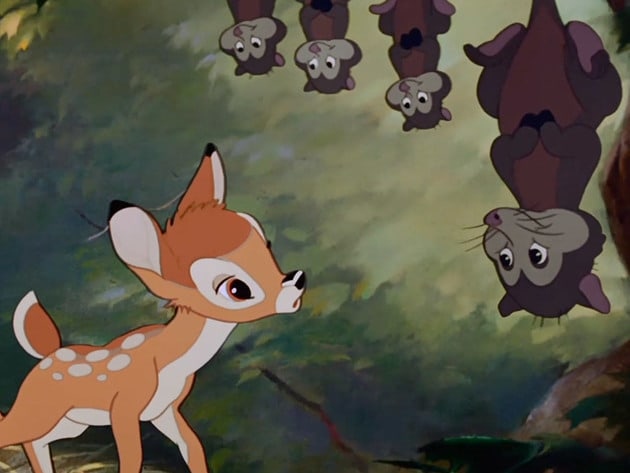 Thumper and his family get a glimpse at the new prince of the forest.