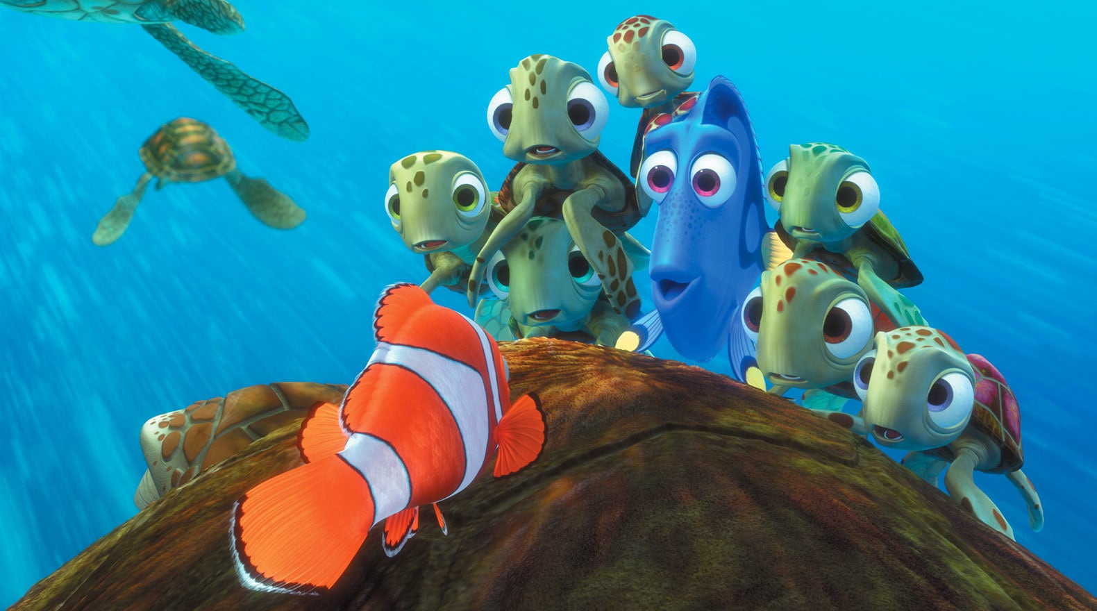Squirt and his friends can't believe all of Marlin's brave tales of traveling to find Nemo.