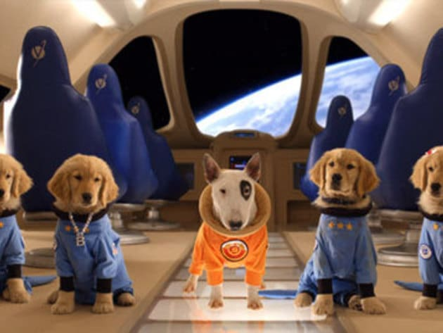 B-Dawg and the buddies look great in their new space uniforms!