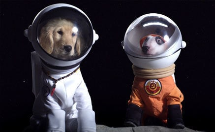 Buddha and Spudnick explore space together