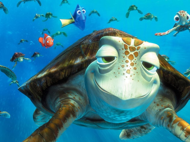"With 150 years under his shell, Crush is very wise. Just don't call him ""Mister Turtle."""