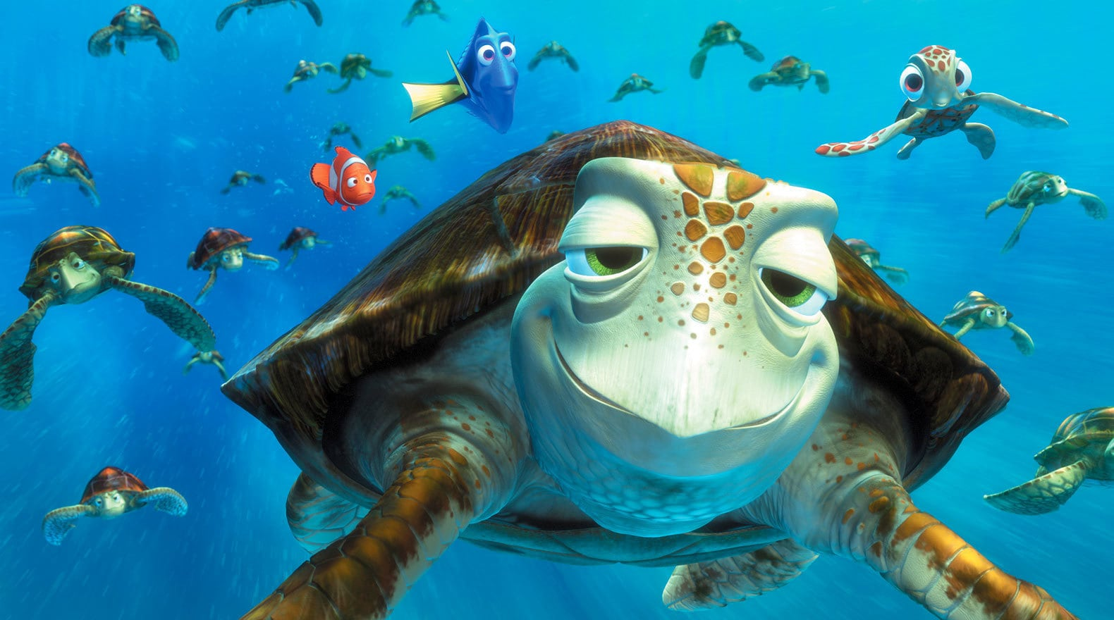 """Characters Crush and Squirt in the EAC with other turtles, Dory and and Marlin in the background in """"Finding Nemo"""""""