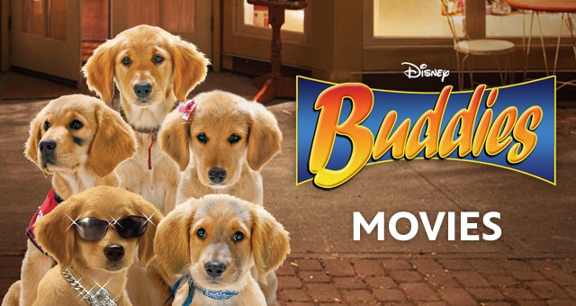 Disney Golden Retriever Names