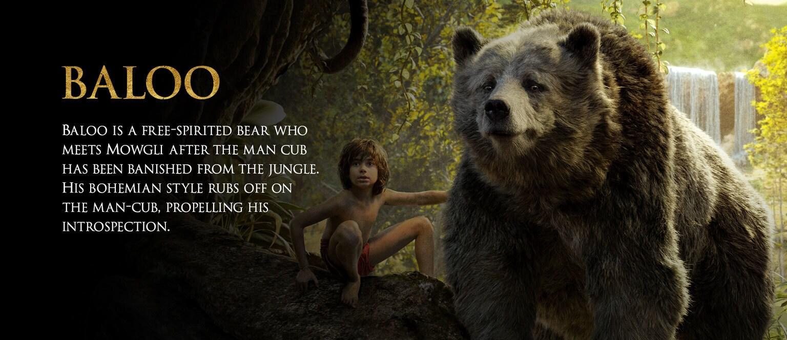 Jungle Book Characters Hero - Baloo