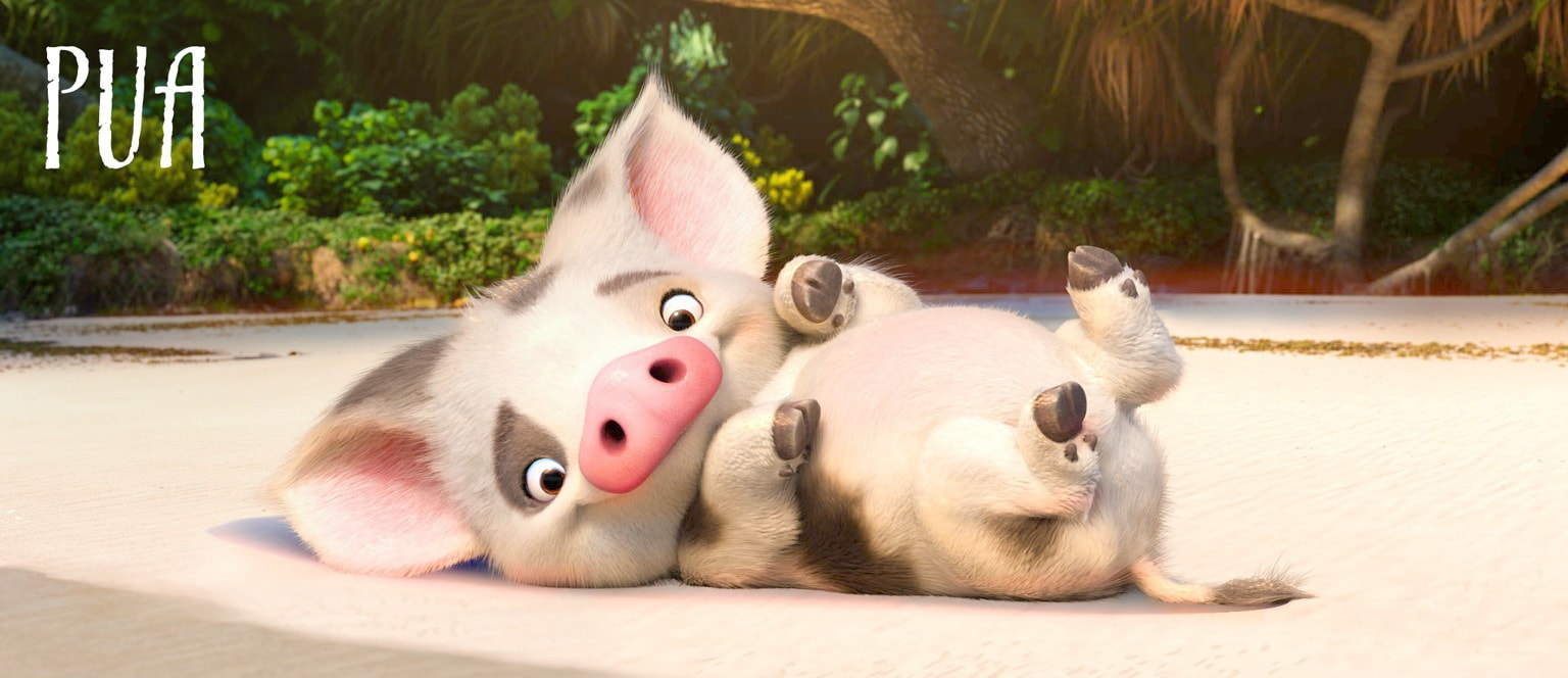 Pau the Pig from Disney's Moana