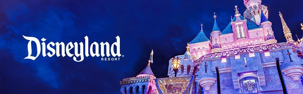 Disney Parks - Disneyland Property - Hero - Pixel Track AU