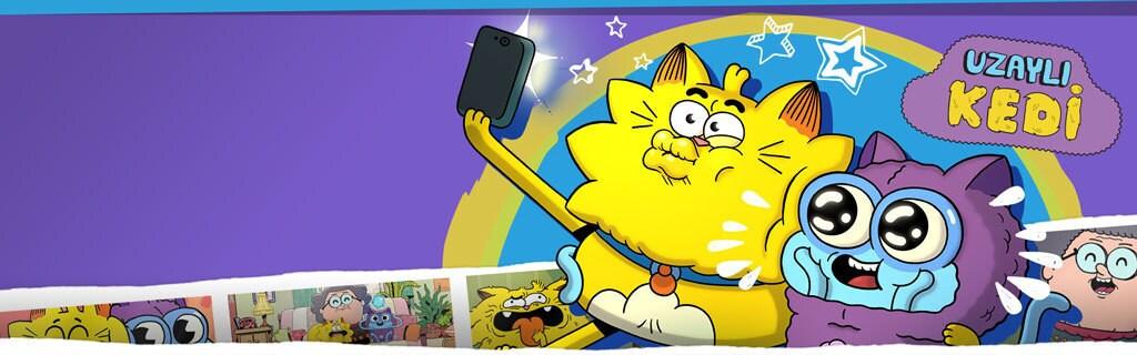 Large Hero - Show - Counterfeit Cat