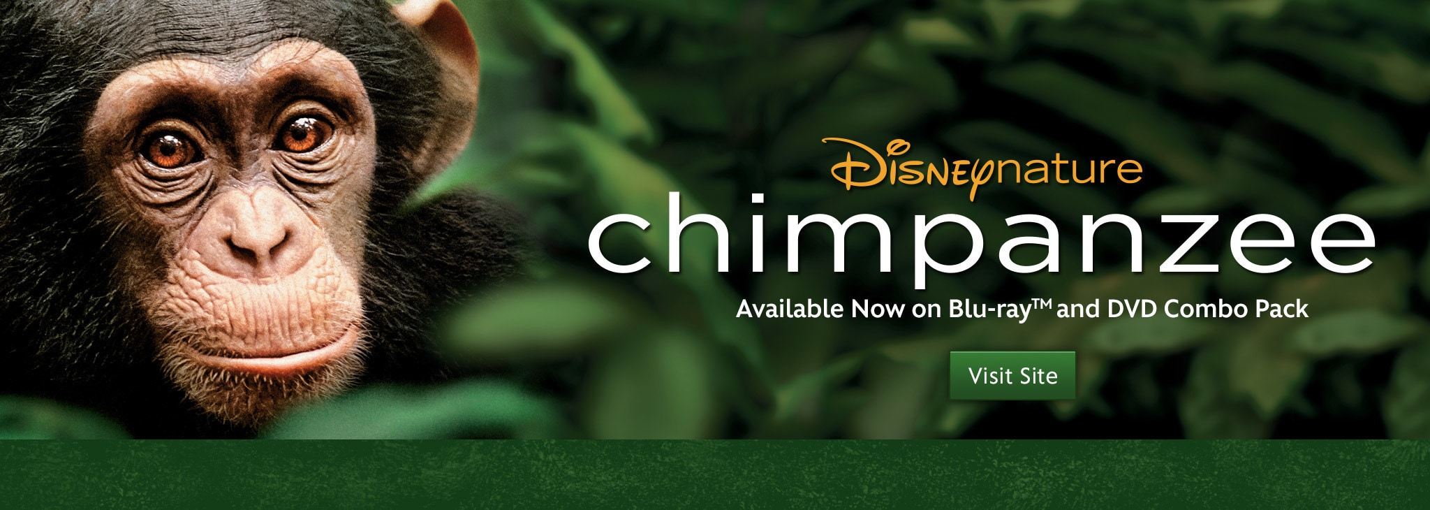 Disneynature | Official Website