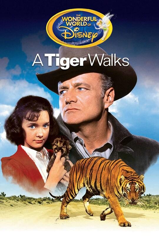 Wonder World of Disney, A Tiger Walks movie poster
