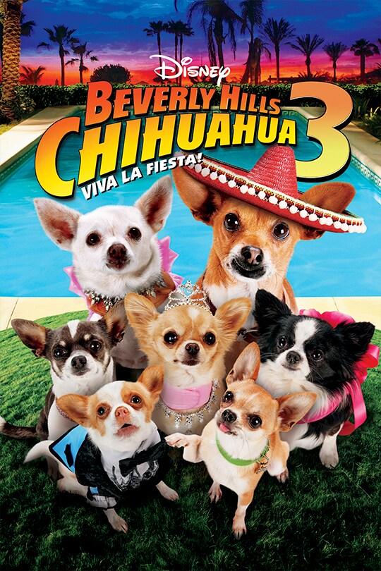 Disney Beverly Hills Chihuahua 3: Viva La Fiesta! movie poster