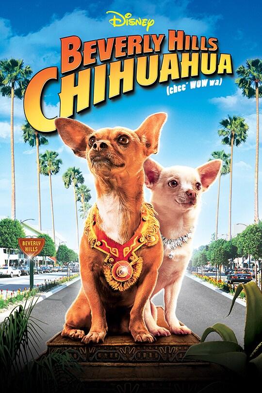 Disney Beverly Hills Chihuahua (chic wow wa) movie poster