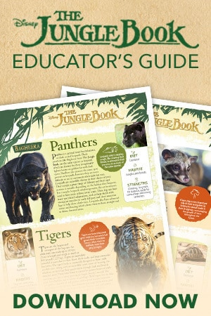 Jungle Book Guide