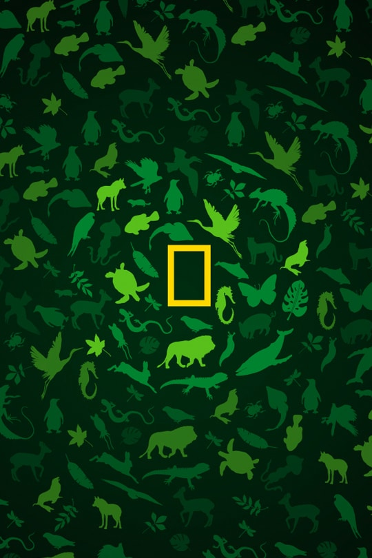 Earth Day Animal Conservation with Nat Geo Explorers