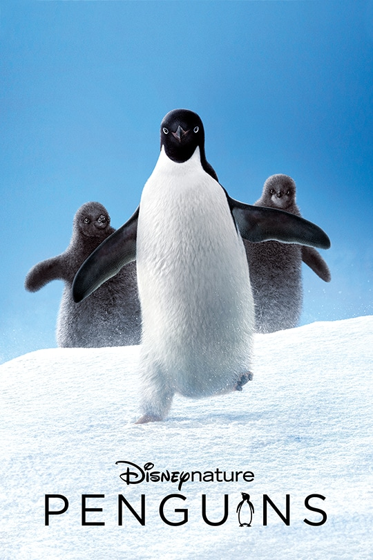Disneynature's Penguins