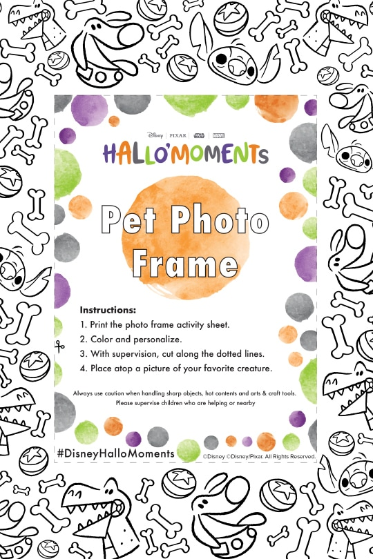 DMM - Halloween - Disney Hallo'Moments Pet Photo Frame (Color)