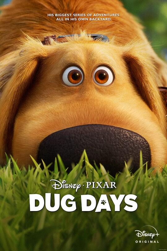 Disney•Pixar | His biggest series of adventures all in his own backyard. | Dug Days | Disney+ Original | movie poster