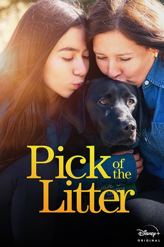 Pick of the Litter - poster image
