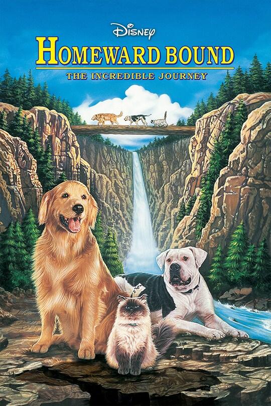 Homeward Bound movie poster