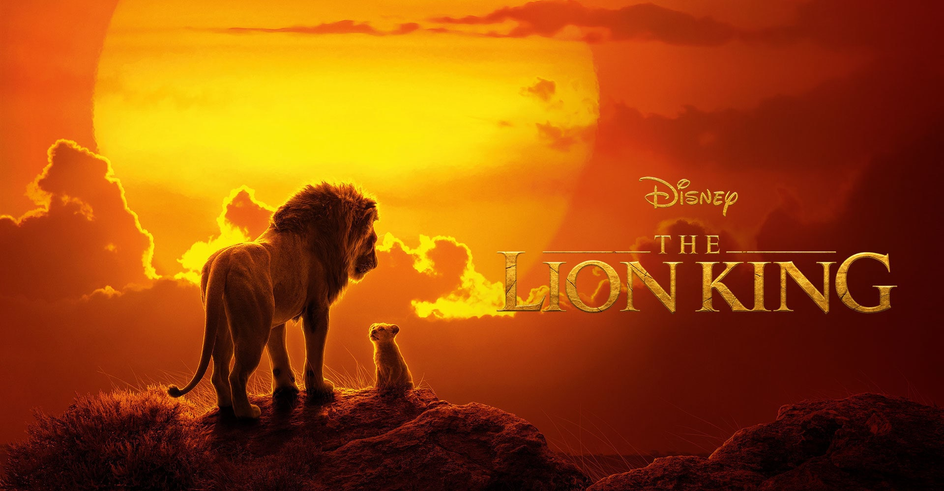 The Lion King  - EMEA Banner