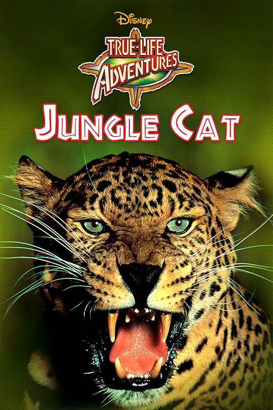 Jungle Cat movie poster