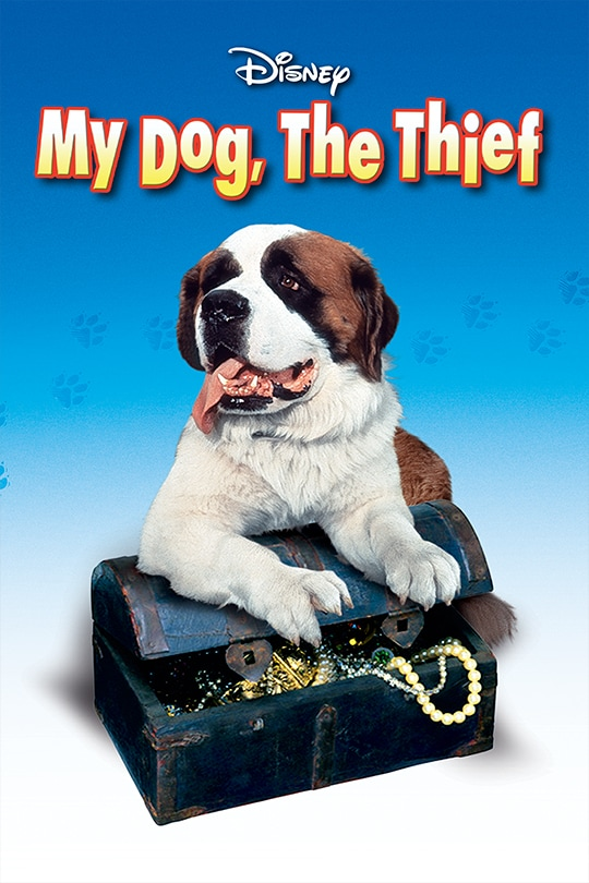 My Dog, The Thief poster