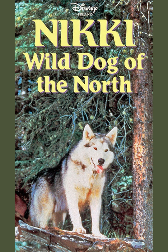 Disney Presents Nikki Wild Dog Of The North movie poster